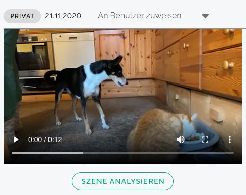 Video Analyse Benutzer auswählen